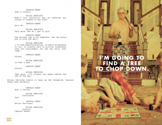 Moonrise kingdom | Interactive script 5